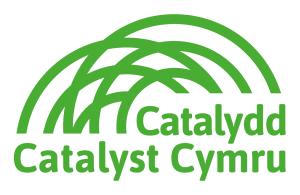 CatalystCymru LOGO 2019 rgb 300x195 1
