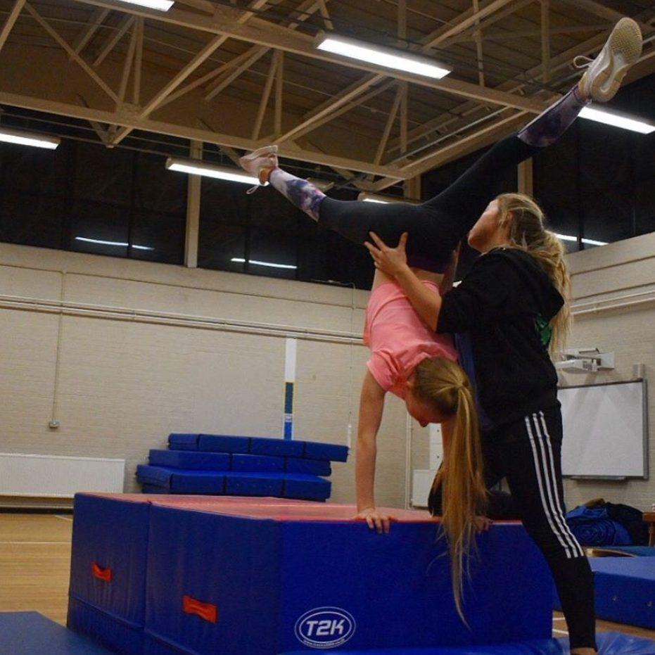 DanceFit Gymnastics 2