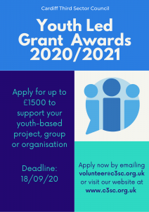 Youth Led Grants Flyer