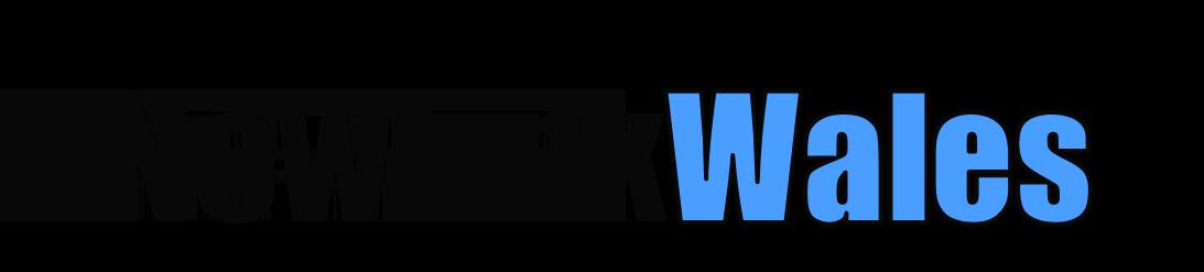 NewLink Wales logo